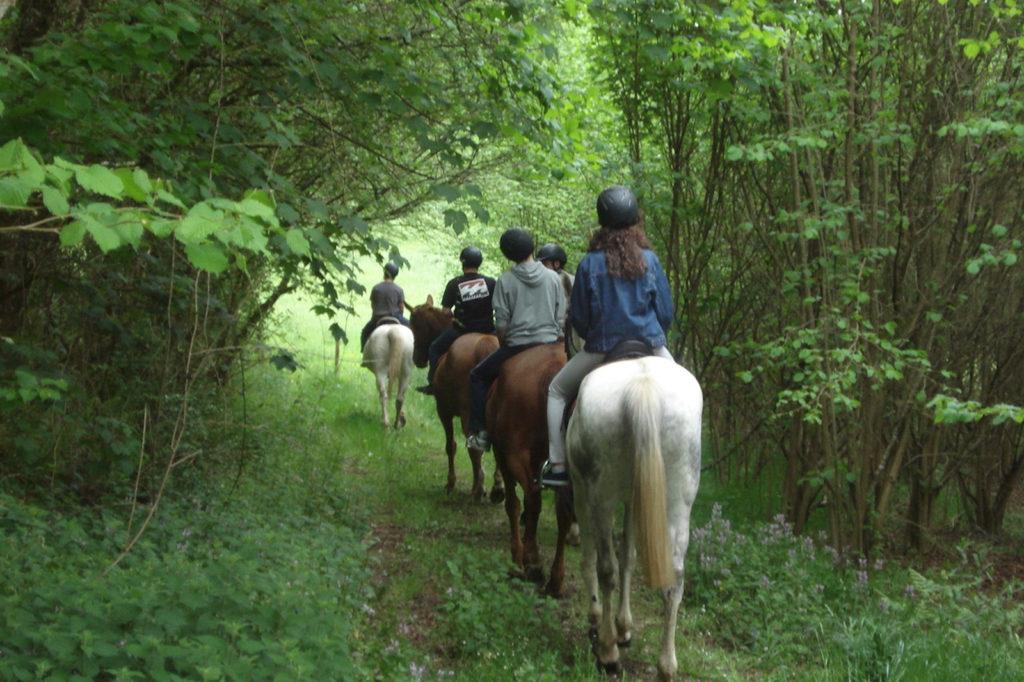 Rutas a caballo en Meira