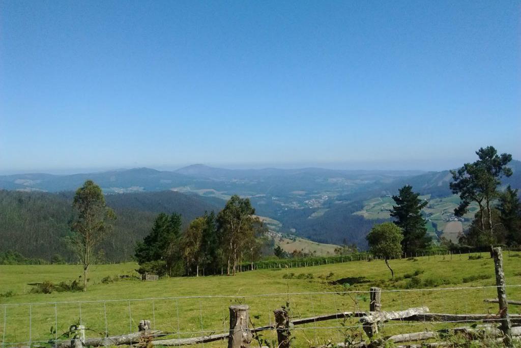 tareira-ruta-Oruoso