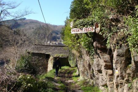tareira-ruta-ferreiros
